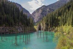 Kaindy mountain lake in Kazakhstan Royalty Free Stock Photography