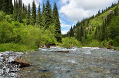 Kaindy Valley in Kazakhstan Royalty Free Stock Images