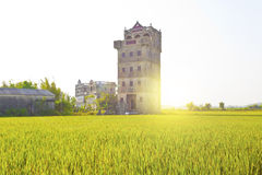 Kaiping Diaolou houses in Guangdong, China at sunset Stock Photo