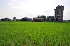 Kaiping Diaolou, Kina Arkivfoto