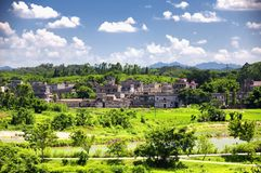Kaiping Diaolou scenic area china. The historic buildings and a rice paddy at Kaiping Diaolou in Zili village in Kaiping China in Guangdong province on a sunny stock photography
