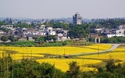 Kaiping Diaolou y pueblos en China imagenes de archivo