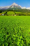 Kaisergebirge en Autriche Photo stock