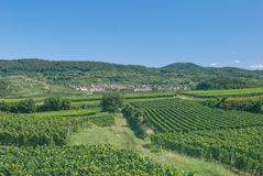 Kaiserstuhl Wine Region,Black Forest,Germany Royalty Free Stock Image