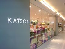 Kaison Fotografía de archivo