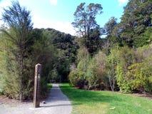 Kaitoke Regionaal Park, Lord van de Ringen Rivendell, Nieuw Zeeland royalty-vrije stock afbeelding