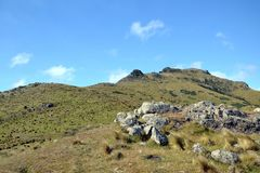 Kaituna Valley Packhorse Hut Track. Hiking track to Packrorse hut. Forest with pine tree. Sunny day with clouds. Mountains with rocks. Valley with pastures Stock Photos
