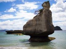 Kajak@ domkyrkaliten vik, Coromandel, Nya Zeeland Fotografering för Bildbyråer