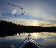 Kajak ed oche al tramonto Fotografia Stock Libera da Diritti