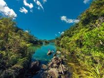 Kajak i Abel Tasman i Nya Zeeland Fotografering för Bildbyråer