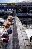 Kajaker ställde upp på skeppsdockan som var klar att lanseras Arkivfoton