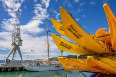 Kajaki i żeglowania naczynie w Wellington Fotografia Stock