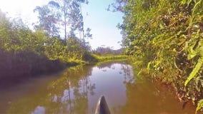 Kajakowa łódkowata przejażdżka na rzece przy vakona lasową stróżówką w Madagascar zbiory