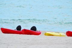 Kajaks en la playa Fotos de archivo