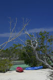 Kajaks op tropisch strand Royalty-vrije Stock Foto's