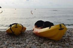 Kajaks på stranden Arkivfoto
