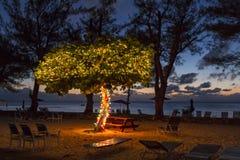 Kajman plaża przy półmrokiem Zdjęcie Stock