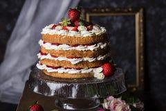 Kaka för ängelmat med nya bär Royaltyfria Bilder