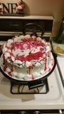 Kaka för mamma Royaltyfria Bilder
