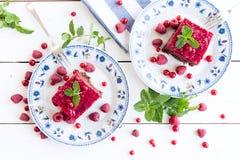 Kaka för ribes för röd vinbär för hallon royaltyfria foton