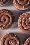 Kaka för söt kastanj med choklad- och sesamfrö överst, produktfotografi för bakelser arkivbild