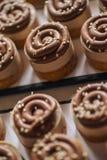 Kaka för söt kastanj med choklad- och sesamfrö överst, produktfotografi för bakelser arkivbilder