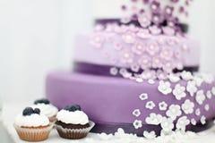 Kaka för bröllopsötsakblåbär Arkivfoton