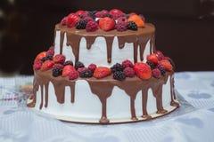 Kaka med choklad och söta sommarbär Royaltyfria Bilder