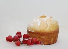 Kaka med viburnumen Fotografering för Bildbyråer