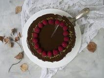 Kaka med vitkräm, chokladdroppander och hallon Chokladsouffleefterrätt med bär Fåglar mjölkar kakan, ptichyemoloko C royaltyfri foto