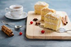 Kaka Napoleon, smördeg, vaniljskiva eller vaniljsåsskiva som garneras med tranbäret royaltyfri foto