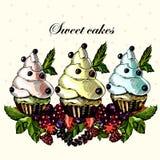 Kaka som dekoreras med söta bär och frukter Fotografering för Bildbyråer