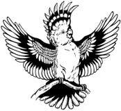 Kakadu czarny biel Zdjęcia Stock