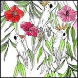 kakadu Kwiat i liść Obraz Stock
