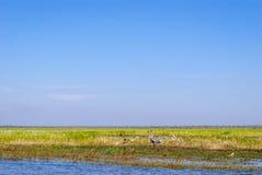 Kakadu National Park (Northern Territory Australia) Royalty Free Stock Image