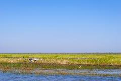 Kakadu National Park (Northern Territory Australia) Royalty Free Stock Photo