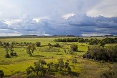 Kakadu nationalpark Arkivbild
