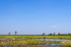 Kakadu park narodowy (terytorium północny Australia) zdjęcie royalty free
