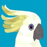 kakadua Arkivfoton