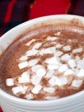 kakao Arkivfoton