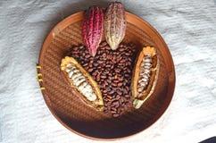 Kakao lizenzfreie stockfotografie