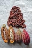 Kakao stockfotos