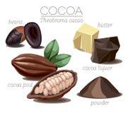 kakao vektor abbildung