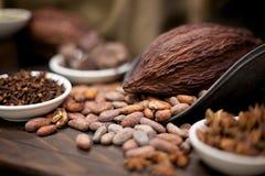 Kakao-Bohnen, Nelken und Stern-Anis auf einer hölzernen Tabelle Stockfoto