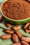 Kakao lub cacao fasole u?ywa? w proszek i, gor?cej czekolady napoju, czekoladzie, ma?le i bry?ach, obrazy royalty free