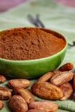 Kakao lub cacao fasole u?ywa? w proszek i, gor?cej czekolady napoju, czekoladzie, ma?le i bry?ach, obraz stock