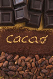 Kakao lurar scritta Fotografering för Bildbyråer