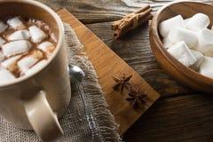 Kakao, marshmallow och kanel på den lantliga tabellen royaltyfri foto
