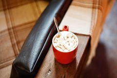 kakao marshmallower, en råna med kakao arkivfoton