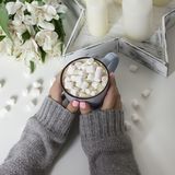 Kakao med marshmallower i kvinnlighänder på vit bakgrund Arkivfoton